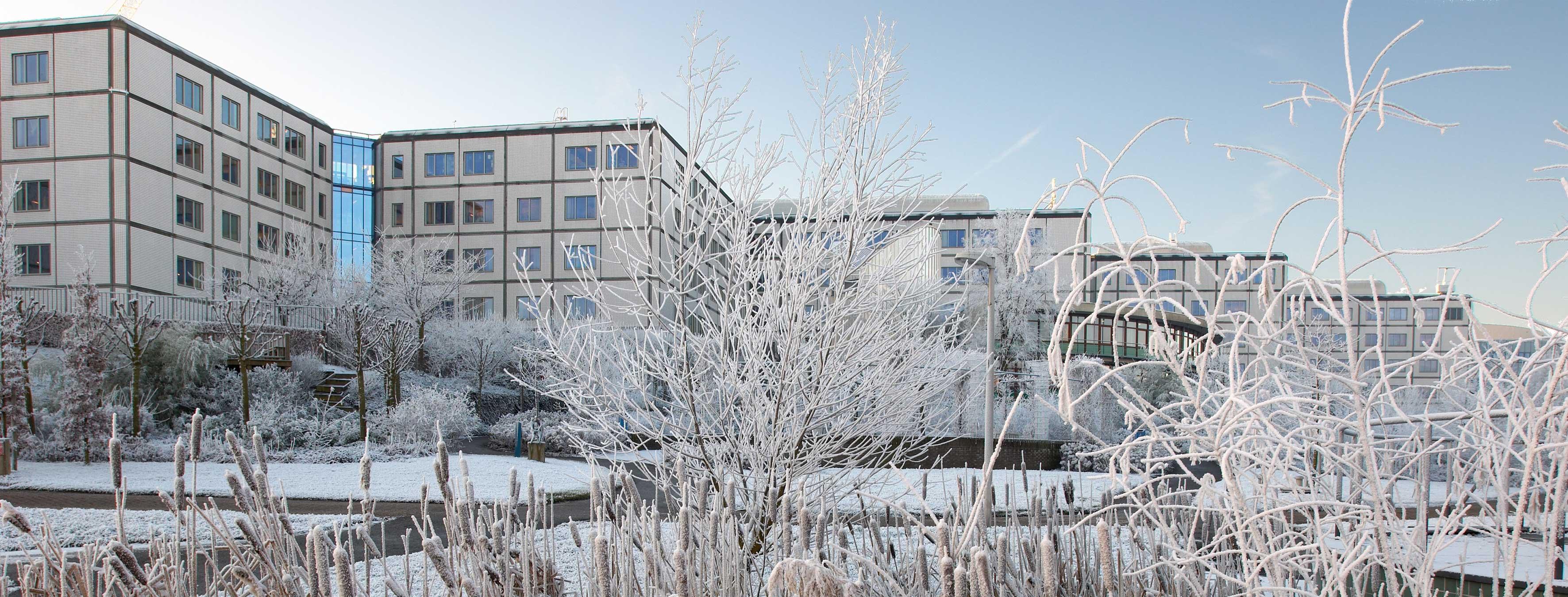 Image Sciences Institute
